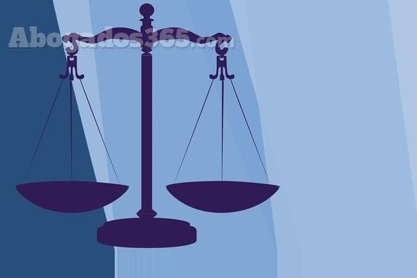 Los abogados de familia han sido los más solicitados en 2015
