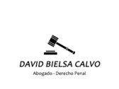 David Bielsa Calvo